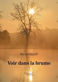 Hervé Gillot - Voir dans la brume.