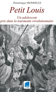 Hervé Gueth - Petit Louis - Un adolescent pris dans la tourmente révolutionnaire.
