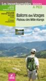 Hervé Milon - Ballons des Vosges - Plateau des mille étangs.