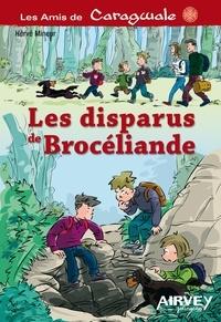 Hervé Mineur - Les disparus de Brocéliande.