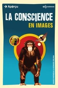 Howard Selina et David Papineau - La Conscience en images.