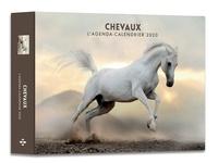 Hugo et Compagnie - L'agenda-calendrier chevaux.