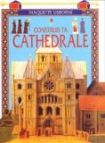Iain Ashman - Construis ta cathédrale.