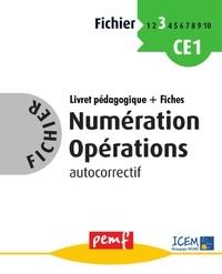 ICEM-Pédagogie Freinet - Fichier Numération Opérations Cycle 2 niveau 4.