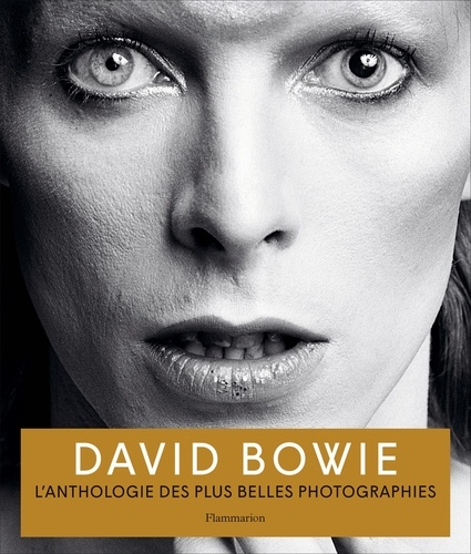 Iconic Images et  Acc Art Books - David Bowie.