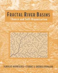 Fractal River Basins. Chance and Self-Organization.pdf