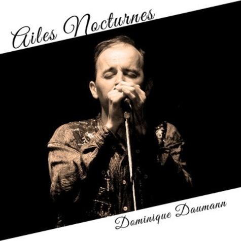 Dominique Daumann - Ailes nocturnes.