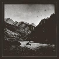 Asylon Terra - Big birds flying. 1 CD audio