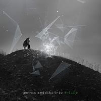 Yannick Seddiki trio - E life - Vinyle. 1 CD audio