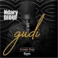 Ndary Diouf - Gudi. 1 CD audio