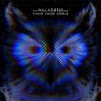 Malade[s] - Toute chose visible. 1 CD audio