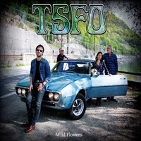 TSFO - Wild Flowers. 1 CD audio