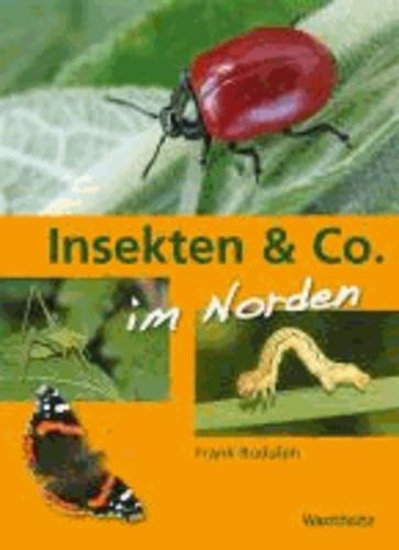 Insekten & Co. im Norden - Spinnen, Heuschrecken, Käfer, Schmetterlinge.