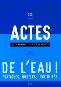 Dominique Lorrain et Franck Poupeau - Actes de la recherche en sciences sociales N° 203, Juin 2014 : De l'eau ! Pratiques, modèles, légitimités.