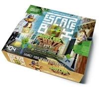 Stéphane Anquetil - Escape box Minecraft Earth.
