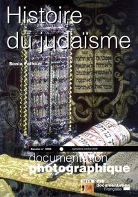Sonia Fellous - La Documentation photographique N° 8065, Septembre-O : Histoire du judaïsme.
