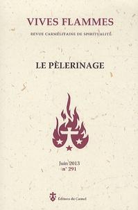 Jean-Gabriel Rueg - Vives flammes N° 291 : Le pèlerinage.