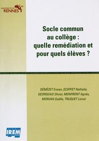 IREM de Rennes - Socle commun au collège : quelle remédiation et pour quels élèves ?.
