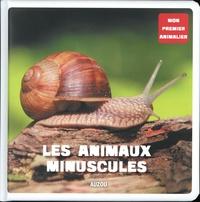 Iréna Aubert - Les animaux minuscules.