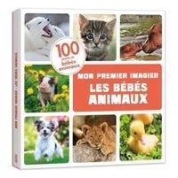 Iréna Aubert - Les bébés animaux.