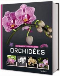 Encyclopédie essentielles des orchidées.pdf