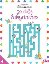 Isabel Aniel et Elizabeth Golding - 50 défis labyrinthes.