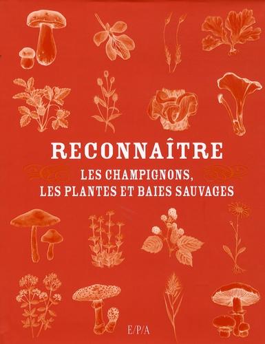 Isabelle Arlasnian - Reconnaître - Les champignons, les plantes et baies sauvages.