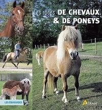 Isabelle Bernard et Myriam Corn - Les races de chevaux et de poneys.