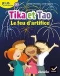 Isabelle Chavigny et Lucile Limont - Français CE1 je lis à mon rythme - Tika et Tao, Le feu d'artifice.