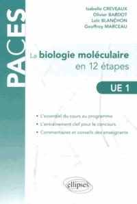 Galabria.be La biologie moléculaire en 12 étapes UE 1 Image