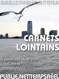 Isabelle Pariente-Butterlin - Carnets lointains - à partir de là, le jour s'est noué différemment.