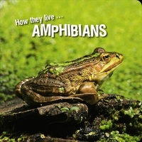 Ivan Esenko et  David Withrington - How they live... Amphibians - Learn All There Is to Know About These Animals!.