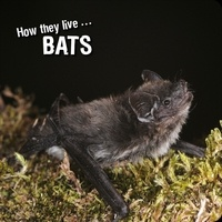 Ivan Esenko et  David Withrington - How they live... Bats - Learn All There Is to Know About These Animals!.