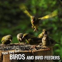 Ivan Esenko et  David Withrington - How they live... Birds - Learn All There Is to Know About These Animals!.