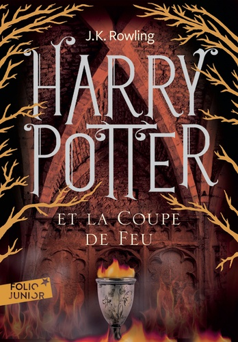 Harry Potter Tome 4 Poche