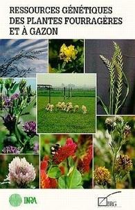 Coachingcorona.ch Ressources génétiques des plantes fourragères et à gazon Image