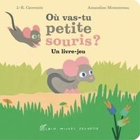 J.-R. Catremin et Amandine Momenceau - Ou vas-tu petite souris ? - Un livre-jeu.