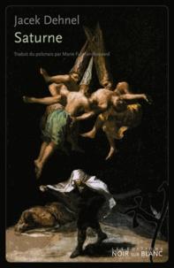 Jacek Dehnel - Saturne - Peintures noires de la vie des hommes de la famille Goya.