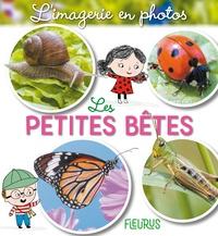 Jacques Beaumont et Ailie Busby - Les petites bêtes.