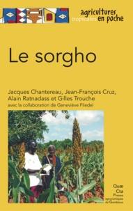 Jacques Chantereau et Jean-François Cruz - Le sorgho.