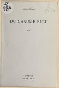 Jacques Estager - Du chaume bleu - Voix.