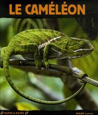 Jacques Fretey - Le caméléon.