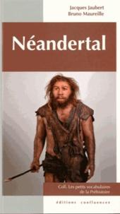 Jacques Jaubert et Bruno Maureille - Néandertal.