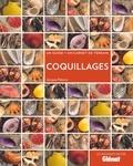 Jacques Pelorce - Coquillages - Un guide + un carnet de terrain.