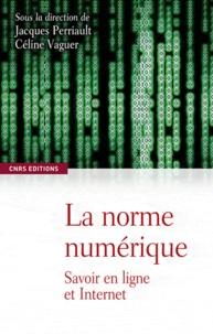 Jacques Perriault et Céline Vaguer - La norme numérique - Savoir en ligne et Internet.