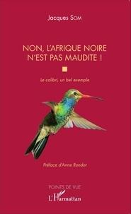 Jacques Som - Non, l'Afrique noire n'est pas maudite ! - Le colibri, un bel exemple.