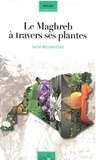 Jamal Bellakhdar - Le Maghreb à travers ses plantes.