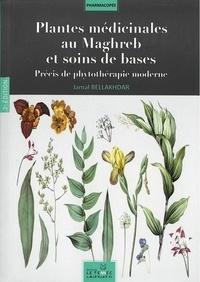 Jamal Bellakhdar - Plantes médicinales au Maghreb et soins de bases - Précis de phytothérapie moderne.