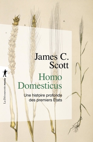 Homo domesticus. Une histoire profonde des premiers Etats
