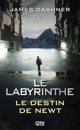 Le Labyrinthe - Format ePub - 9782823882032 - 9,99 €